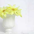 White Vase With Yellow Daisies by Terri Tiffany