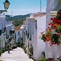 White Village Of Frigiliana Andalucia., Spain by Philip Enticknap