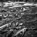 White Water Bw by Walt Foegelle