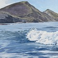 White Wave At Crackington  by Lawrence Dyer