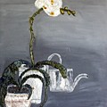 White Wild Orchid by Leslye Miller