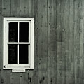 White Window Minimalist by Terry DeLuco