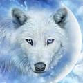 White Wolf Moon by Carol Cavalaris