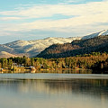 Whiteface Dusting by Tony Beaver