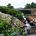 Whitefish Falls by Debbie Oppermann