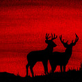 Whitetail Deer At Sunset by Michael Vigliotti