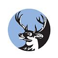 Whitetail Deer Buck Head Circle Retro by Aloysius Patrimonio