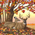 Whitetail Deer - Hilltop Retreat by Crista Forest
