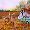Whitetail Deer With Truck And Barn by Karl Wagner