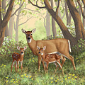 Whitetail Doe And Fawns - Mom's Little Spring Blossoms by Crista Forest