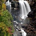 Whitewater Falls - Nc by Shari Jardina