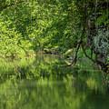 Whitewater River Scene 50 by John Brueske