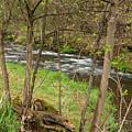 Whitewater River Spring 43 by John Brueske