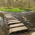 Whitewater River Spring 52 by John Brueske