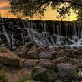 Whitnall Park Sunburst by Dale Kauzlaric