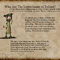 Who Are The Leprechyauns Of Ireland by John Junek