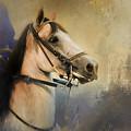 Whoa Slow Down Horse Art by Jai Johnson