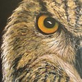 Whooo Goes There by Cathy McGregor