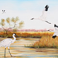Whooping Cranes-jp3151 by Jean Plout