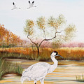 Whooping Cranes-jp3152 by Jean Plout