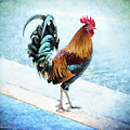 Why Did The Chicken... by Korrine Holt