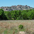Wichita Mountains Wildlife Refuge - Oklahoma by Debra Martz