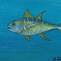 Wicked Tuna  by Edward Walsh