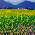 Wicklow Meadow Ireland by John  Nolan