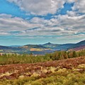 Wicklow Mountains  by Marisa Geraghty Photography