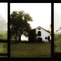 Widner Farms by Bill Cannon