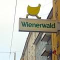 Wienerwald In Salzburg by Minaz Jantz