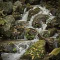 Wigwam Falls Blue Ridge Parkway by Dawn Gari