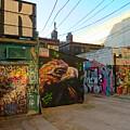 Wild Alley by John Malone
