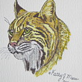 Wild Bobcat by Kathy Marrs Chandler