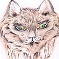 Wild- Brown Hair Cat by Teresa White
