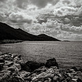 Wild Coast by Diego Muzzini