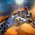 Wild Dreamers by Carol Cavalaris