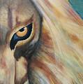 Wild by Elizabeth Gyles Johnson
