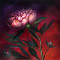 Wild Fire Peony by Neadeen Masters