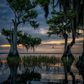 Wild Florida by Ghostwinds Photography