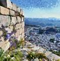 Wild Flowers On Loophole In Palamidi Castle by George Atsametakis