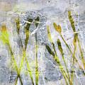 Wild Grass 3 by Nancy Merkle
