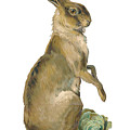 Wild Hare by ReInVintaged