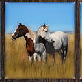 Wild Horse Tryptic by Rich Beer
