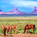 Wild Horses In Monument Valley by Dominic Piperata
