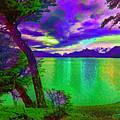 Wild Lake by Rick Bragan