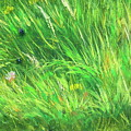 Wild Meadow Grass Structure In Bright Green Tones, Painting Detail. by Jozef Klopacka