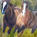Wild Mustangs by Michael Lee