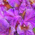 Wild Orchids by Carol Cavalaris