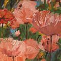 Wild Poppies by Barbara Andolsek